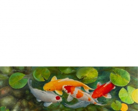 Five Koi Under The Water Lilies