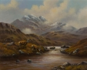 The Glen by Wendy Reeves